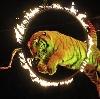 Цирки в Невьянске